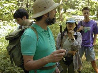 Wildman holding sassafras root