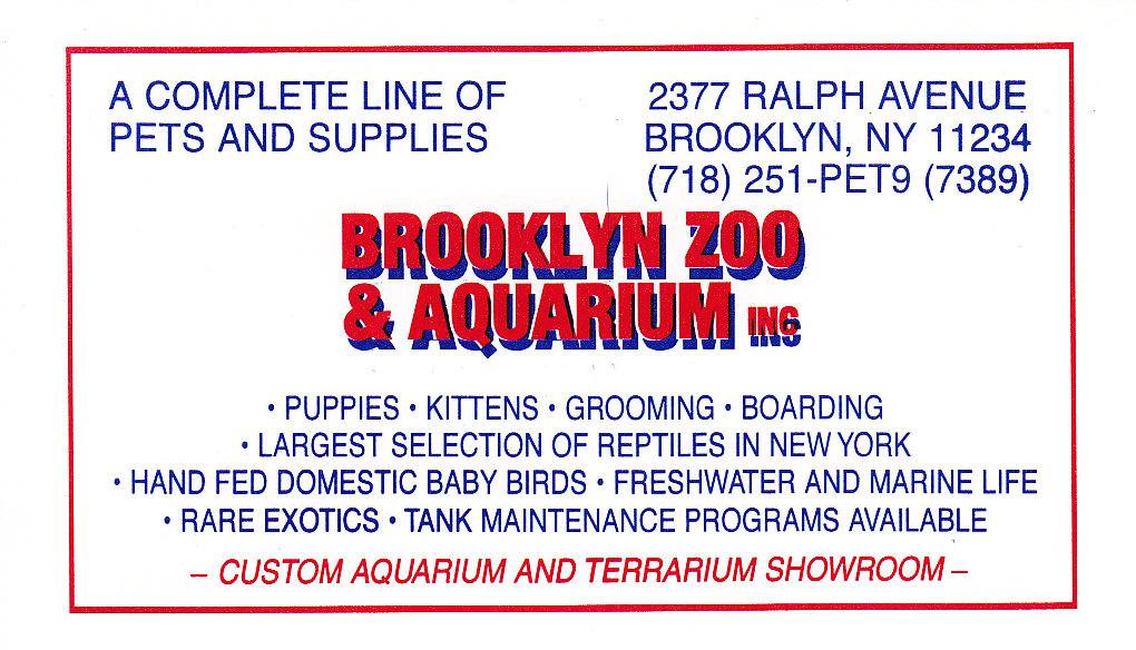Brooklyn Bike Tour Saltwater Tropical Fish Free Aquarium